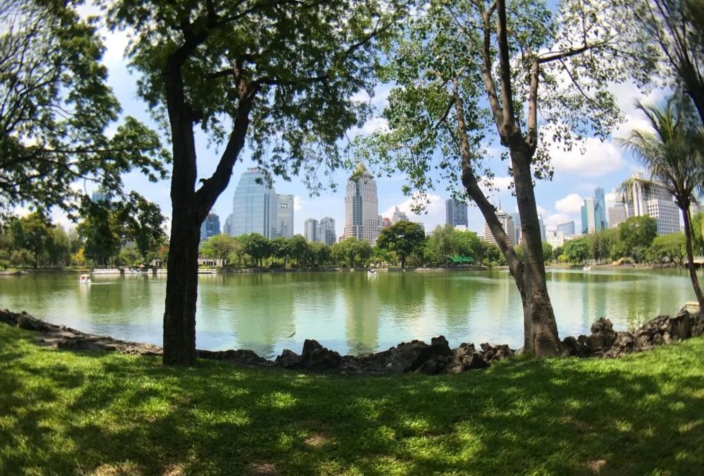 با پارک لامپینی در بانکوک آشنا شوید