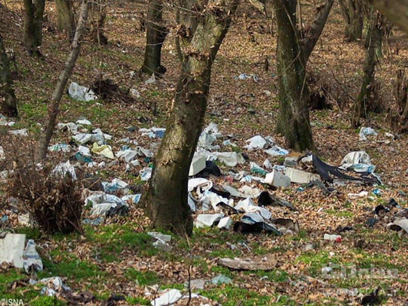 مجازات دفع غیر بهداشتی زباله در حاشیه شهر