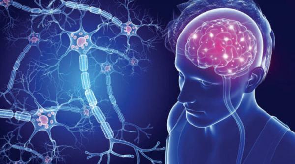 جوانسازی مغز مبتلا به آلزایمر با یاری یک مولکول!