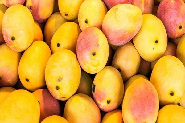 میوه ای که به شدت برای خانم های باردار توصیه می شود